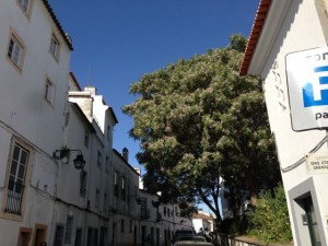 A typical narrow Evora street, with old buildings and a perennially blue sky.